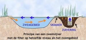 principe_zwemvijver1