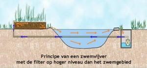 principe_zwemvijver3
